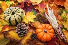Natural autumn decoration Royalty Free Stock Photos