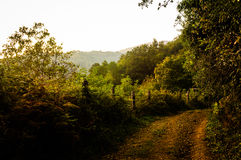 Natural Autumn Landscape Stock Photos