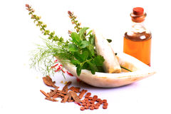 Natural ayurveda Stock Image