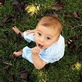 Natural Baby. A baby boy playing in the grass Royalty Free Stock Photo