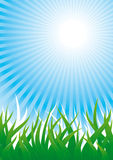 Natural background - 2. Background with grass and sun beams Royalty Free Stock Photos