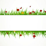 Natural background Royalty Free Stock Photo