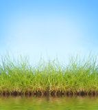Natural background Stock Image
