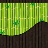 Natural background with bamboo and wood. Texture Royalty Free Stock Photography