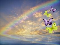 Natural background with butterflies and rainbow in sea reflection