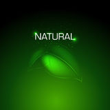 Natural background Design Stock Photography