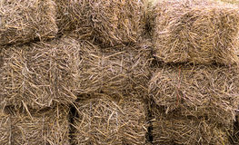 Natural background dry hay stacked in a block livestock feed wall. Natural background dry hay stacked in a block livestock feed strong wall Royalty Free Stock Photo