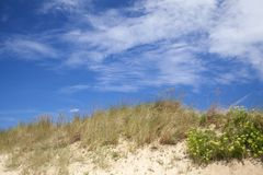 Natural background of dunes Stock Photography