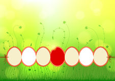 Natural background with Easter eggs Stock Photography