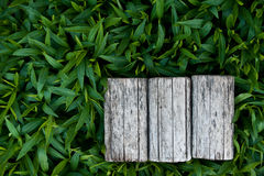Natural background. Natural background with an empty space Royalty Free Stock Images