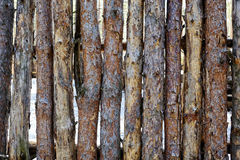 Natural background - a fence made of logs of pine. Stock Photos