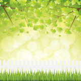 Natural background. Fresh spring background.Nature Vector Royalty Free Stock Image