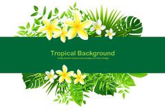 Exotic Toucan Bird, Colorful Hibiscus Flowers Blossom and Tropic. Natural background with green leaves spring season, Colorful Hibiscus Flowers Blossom and Royalty Free Stock Photos