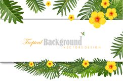 Exotic Toucan Bird, Colorful Hibiscus Flowers Blossom and Tropic. Natural background with green leaves spring season, Colorful Hibiscus Flowers Blossom and Royalty Free Stock Photo