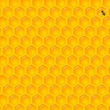 Natural Background with Honeycombs. Vector Illustration of a Natural Background with Honeycombs Stock Images