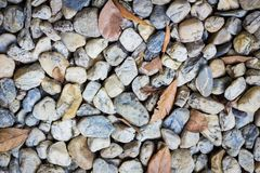 Natural background image of pebbles in the park with dry leaves Stock Photography