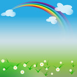 Natural background with rainbow and daisies in spring or summer day Stock Images
