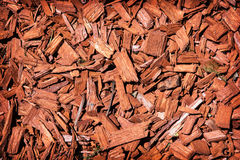 Natural background of red mulch Stock Photo