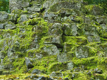 Natural background of rocks with moss Stock Photos