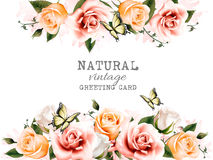 Natural background with roses. vector. Royalty Free Stock Photos