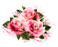Natural background with roses. Vintage vector Royalty Free Stock Images