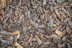 Natural background. The texture of firewood, pieces of wood and bark, on the whole frame. Horizontal frame Stock Photos