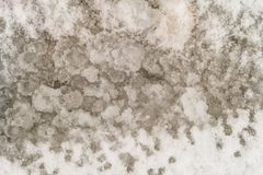 Natural background of thawed loose snow royalty free stock photos