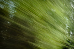 Natural Background Tree Motion Blur Royalty Free Stock Images