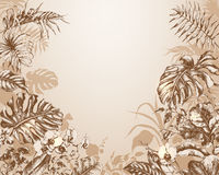 Natural  Background with  tropical plants. Royalty Free Stock Photos