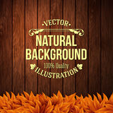 Natural background with wooden board and autumn leaves. Vector i Royalty Free Stock Images