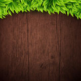 Natural background with wooden board and leaves. Vector illustra Royalty Free Stock Photography