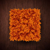 Natural background with wooden board and square shape made of au. Tumn leaves. Vector illustration Royalty Free Stock Images