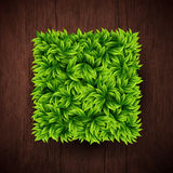 Natural background with wooden board and square shape made of le Royalty Free Stock Image