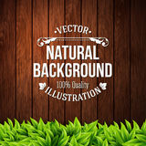 Natural background with wooden planks and leaves. Vector illustr Stock Images