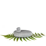 Natural Balance. Zen abstract of a green fern leaf and with gray spa stones in perfect balance, over white background Stock Image
