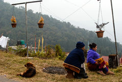 Natural Balcony. Two Sikkimies village women are relaxing at their balcony in the lap of nature with their pet near Gantok, Sikkim, India Royalty Free Stock Images