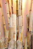 Natural bamboo Stock Photos