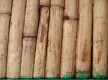 Natural bamboo fence background texture. Asian brown inclined st. Icks pattern. Yellow dry bark bundled into a wall or floor finish with green binding Stock Images