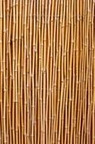 Natural bamboo texture Stock Photos
