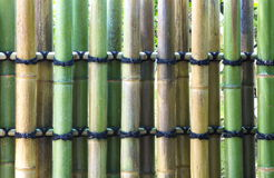 Natural bamboo texture Stock Photography