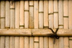 Natural bamboo wall Royalty Free Stock Images