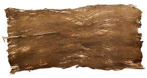 Natural bark texture Royalty Free Stock Image