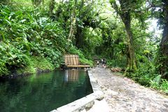 Natural basin in gaudeloupe. Natural basin in guadeloupe forest royalty free stock photo