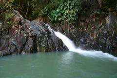 Natural basin. Guadeloupe natural basin with waterfall royalty free stock images