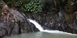 Natural basin. Guadeloupe natural basin with waterfall stock photo
