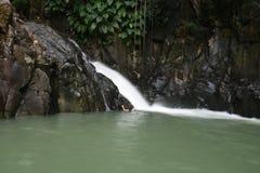 Natural basin. Guadeloupe natural basin with waterfall stock images