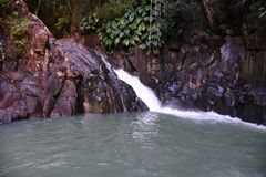 Natural basin. Guadeloupe natural basin with waterfall royalty free stock image