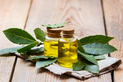 Natural bay laurel essential oil for beauty and spa. Healthy lifestyle concept. Natural bay laurel essential oil, essence in glass bottle with leaves on a rustic Stock Image