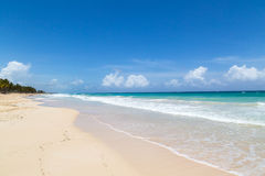 Natural beach with palm trees. In the Dominican Republic Stock Photos