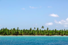 Natural beach with palm trees. In the Dominican Republic Stock Photo